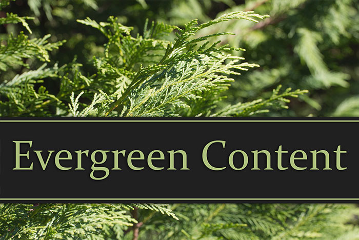 چطور به منظور رتبه گرفتن در گوگل محتوای همیشه سبز بنویسیم؟
